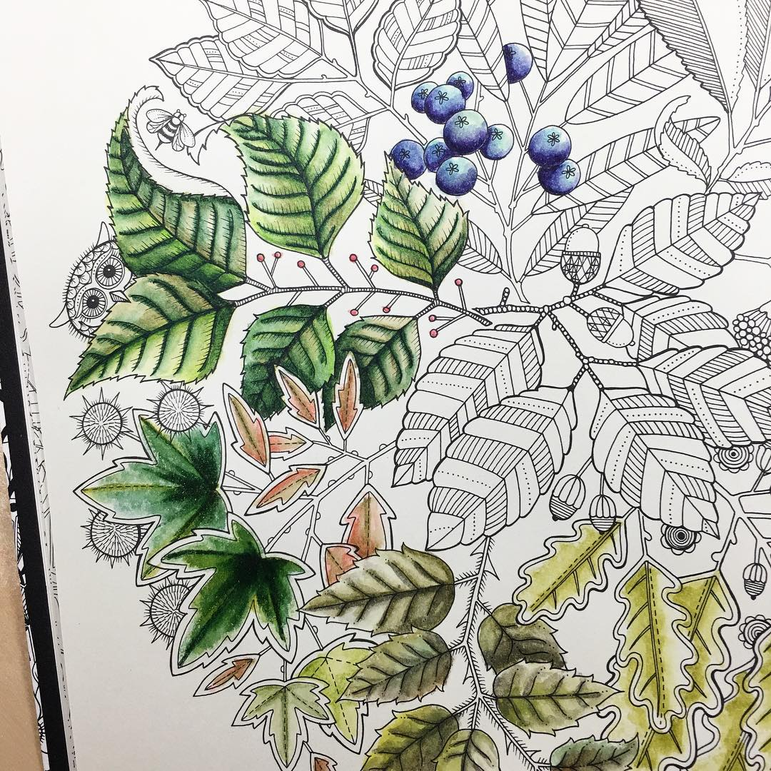 More Secret Garden coloring book progress Home for 15 minuteshellip